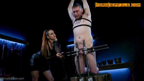 Divinebitches, Kink: Bella Rossi, Dozer - New Male Dom Made to Submit and Take Pain from Goddess Bella Rossi   (SD, Fetish, Femdom) 540p