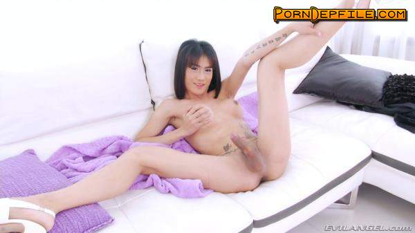 TSPlayground, EvilAngel: Catty - TS Catty (Solo, Transsexual, Shemale, Ladyboy) 1080p