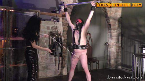 Clips4sale, Dоminаtеd-Mеn: Mistress Zita - Armageddon For His Dick Part 1 (FullHD, Fetish, Ballbusting, Femdom) 1080p
