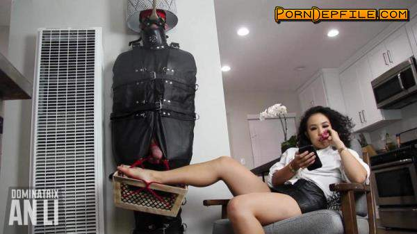 Clips4sale: An Li - Human Furniture for a Day (HD Porn, FullHD, Fetish, Femdom) 1080p