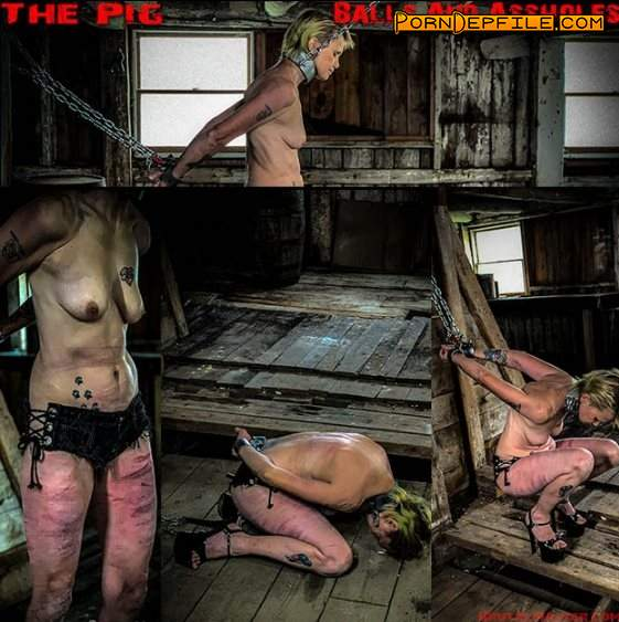 BrutalMaster: The Pig balls and ass holes (FullHD, BDSM, Torture, Humiliation) 1080p