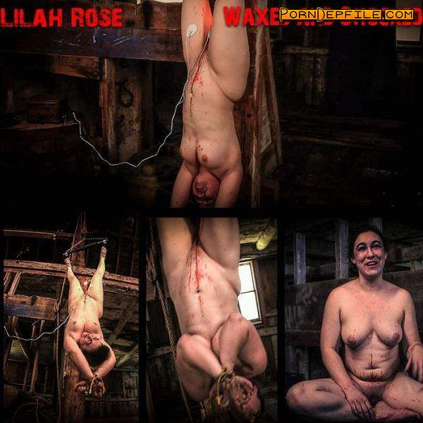 BrutalMaster: Lilah Rose - Waxed and Shocked (FullHD, BDSM, Torture, Humiliation) 1080p